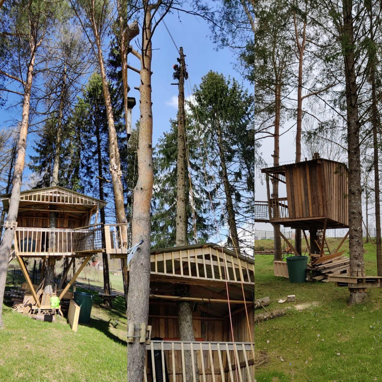 Eemaldasime kuivanud lehise katusest kõrgemale jääva osa, et see onnile ja all mängivatele lastele ohtlikuks ei muutuks. Ps! Puu oli kuivanud juba enne onni ehitamist.